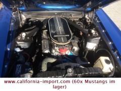 Ford  Mustang (60x mustangs im lager)